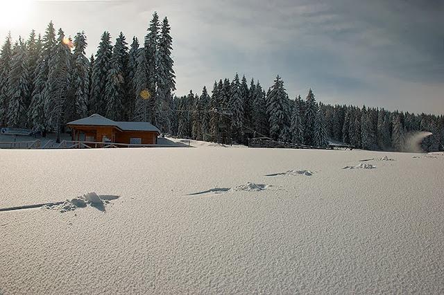 Mirno jutro na Kopaoniku i trgovi u snegu