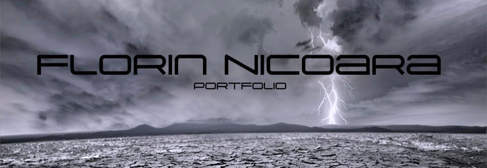 Florin Nicoara - Artist - Writer - Photographer