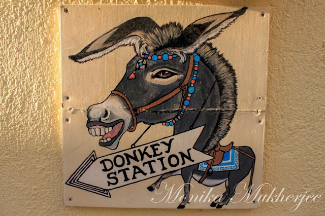 Santorini Donkey Station Greece by Monika Mukherjee