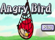 Angry Birds Surround