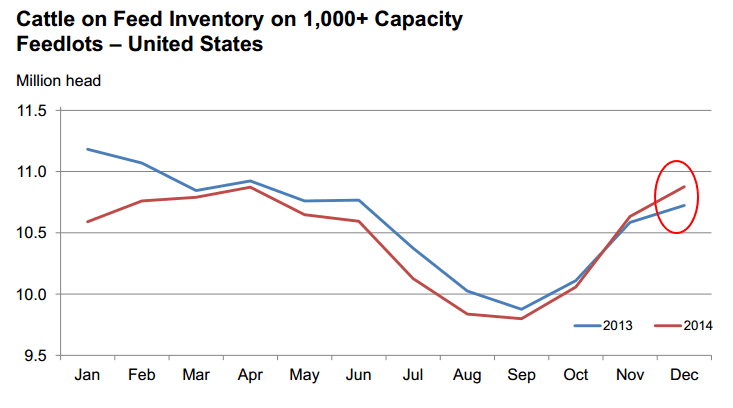 cattle on feed inventory chart