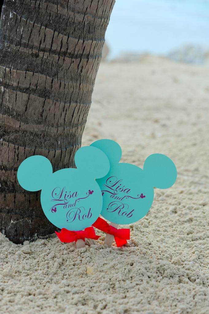 Real Disney Wedding Lisa And Robs Disney Cruise Wedding This