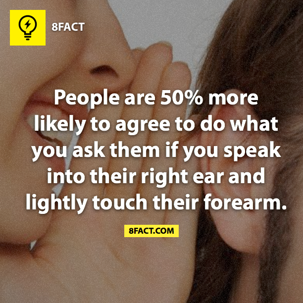right ears , 8fact