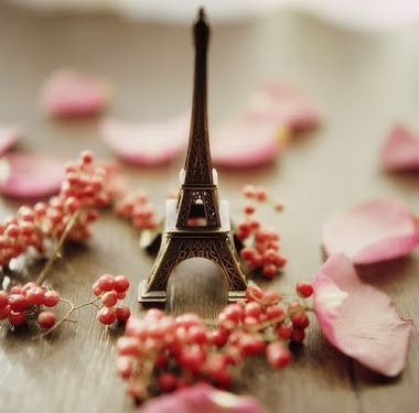 i want  to paris with you