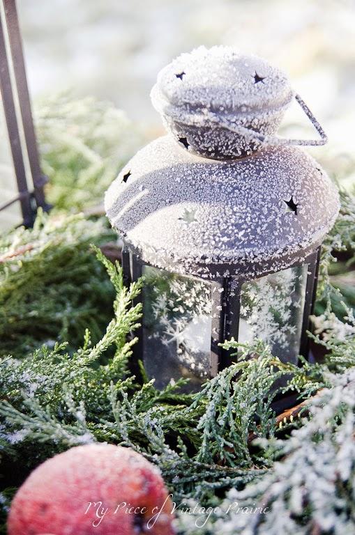 Mrazivé rána / Frosty mornings