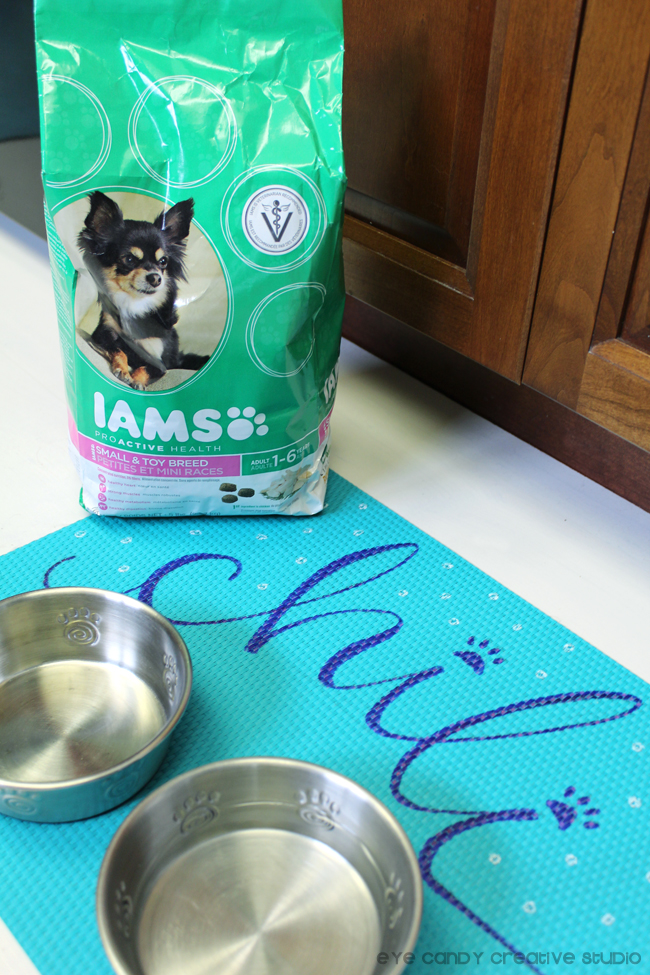 Iams dog food, dog crafting, dog bowls, DIY pet crafts, small breed