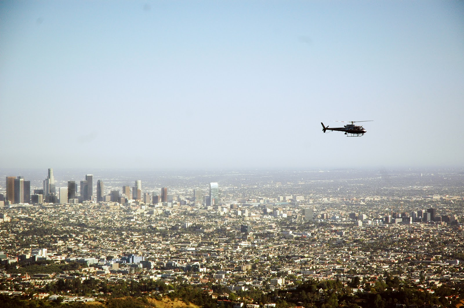 lapd helicopter ride along with Hollywood Sign Hike on Ani Ucar 4661403 as well Watch in addition Watch likewise  likewise Story.