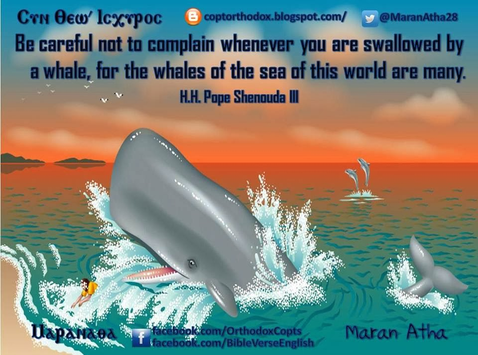 Coptic Orthodox Jonah In The Belly Of The Fish By Hh Pope