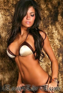 Chicago botique escorts
