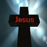 Bajo la Luz de Cristo