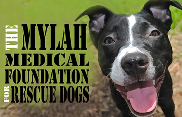 The Mylah Medical Foundation