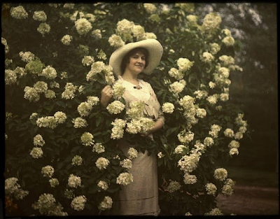 Gorgeous autochrome photo #antique #autochrome #photograph