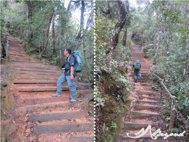 Mt Kinabalu trail, mt kinabalu difficulty, trail of kota kinabalu, trail of mt kinabalu, mt kinabalu rocks