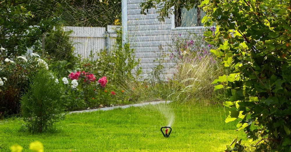 How to Transform a neglected Garden ~ UK Property Headlines