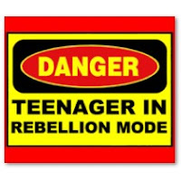 effects of teenage rebellion Teenagers don't use their common sense in what's right and wrong they all ever think about is to have fun and excitement that lead them to no good they.