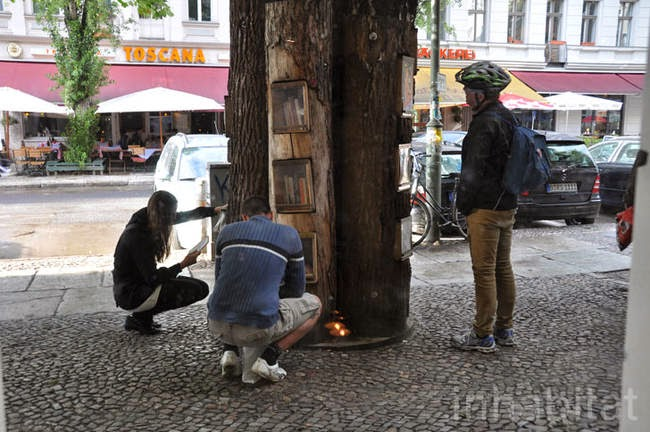 These trees are used as a free book exchange for residents in the area. - A Neighborhood In Germany Has An Awesome Book Exchange Inside Of Trees