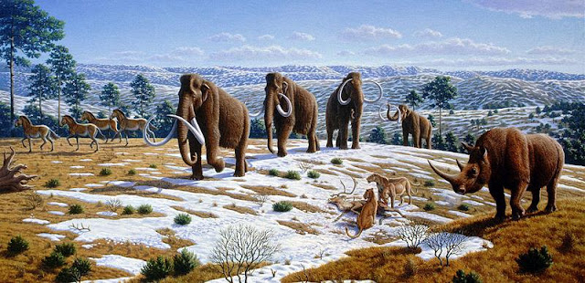 Animals of the Ice Age