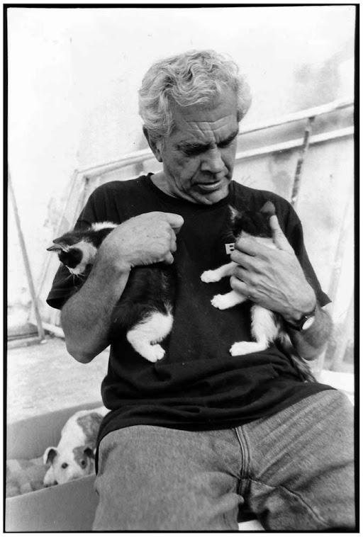 Pablo y gatitos