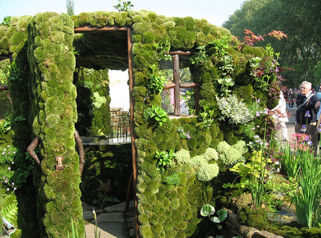 vertical vegetable garden design - Vertical Vegetable Garden Design