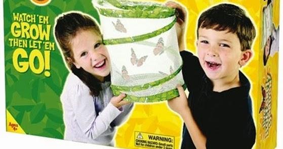 mein unterrichtsmaterial mit kindern beobachten wie raupen wachsen sich verpuppen und als. Black Bedroom Furniture Sets. Home Design Ideas