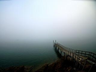 Free Download Misty Morning Wallpaper