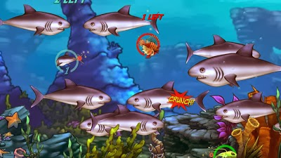 Free download pc games full version feeding frenzy 2 full for Fish frenzy game