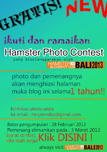 Hamster Photo Contest