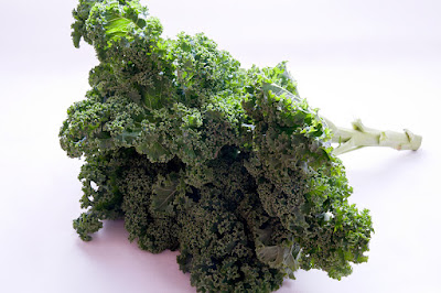 Kodrolistni ohrovt - Kale