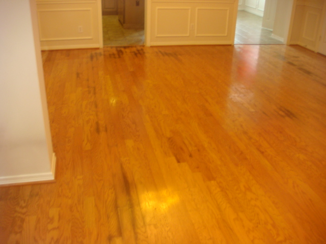 How To Remove Black Urine Stains From Hardwood Floors Best Black - How to remove black stains from hardwood floors