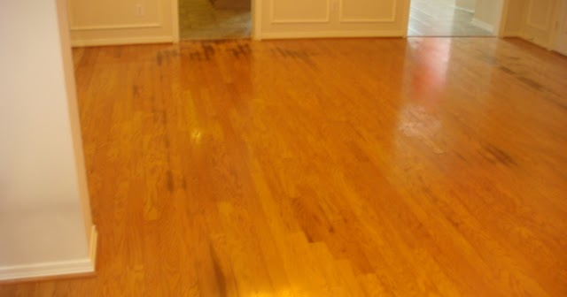 remove all how to remove urine stains from wood floors. Black Bedroom Furniture Sets. Home Design Ideas