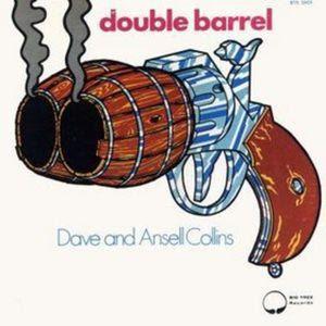 http://4.bp.blogspot.com/-C0LcSJY3u-w/T-dACK5SBOI/AAAAAAAAEPA/rfA5yCc7J3Y/s320/double+barrel.jpg