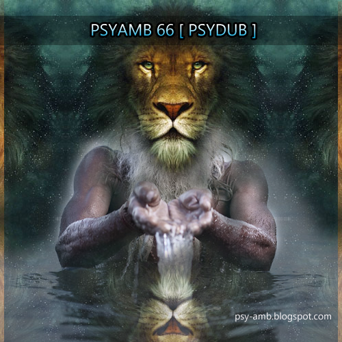 PsyAmb 66 - PsyDub Mix cover image
