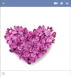 Heart Emoticon Made Of Flowers