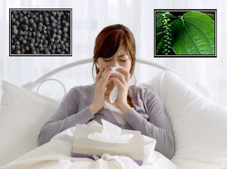 Black Pepper: A great home Remedy for cough
