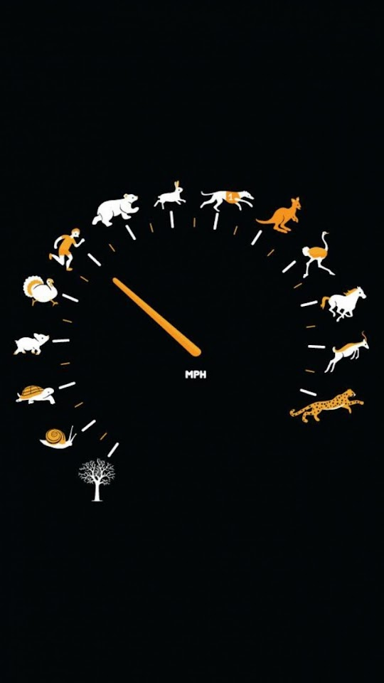 Funny Gauge Animals Speed  Galaxy Note HD Wallpaper