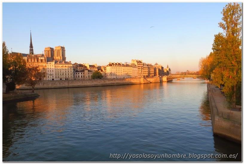 Vista de la isla de la Cité y el Sena