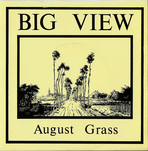 Big View August Grass