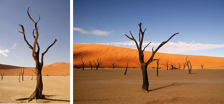 Ynas Reise Blog | Deadvlei und Sussusvlei in Namibia