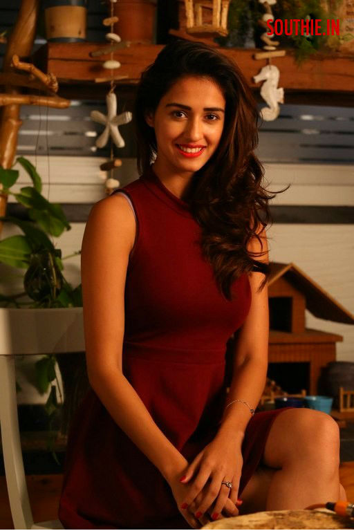 hot dish Patani, stunning dish patani, loafer movie heroine dish patani, varun Tej, Puri Jagannadh, Disha Patani, Latest images, sensual disha patani, latest images, hot images, disha patani in loafer
