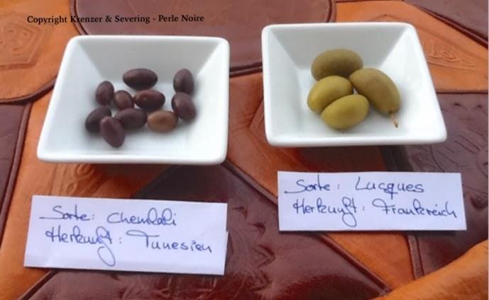 Chemlali Oliven aus Tunesien und Lucques Oliven aus Frankreich im Vergleich