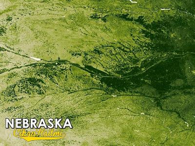 Teknologi Baru : Satelit Untuk Kesan Tumbuhan Hijau