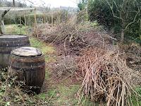 Barriles usados como compostadores y ramas para astillar, enredandonogaraxe