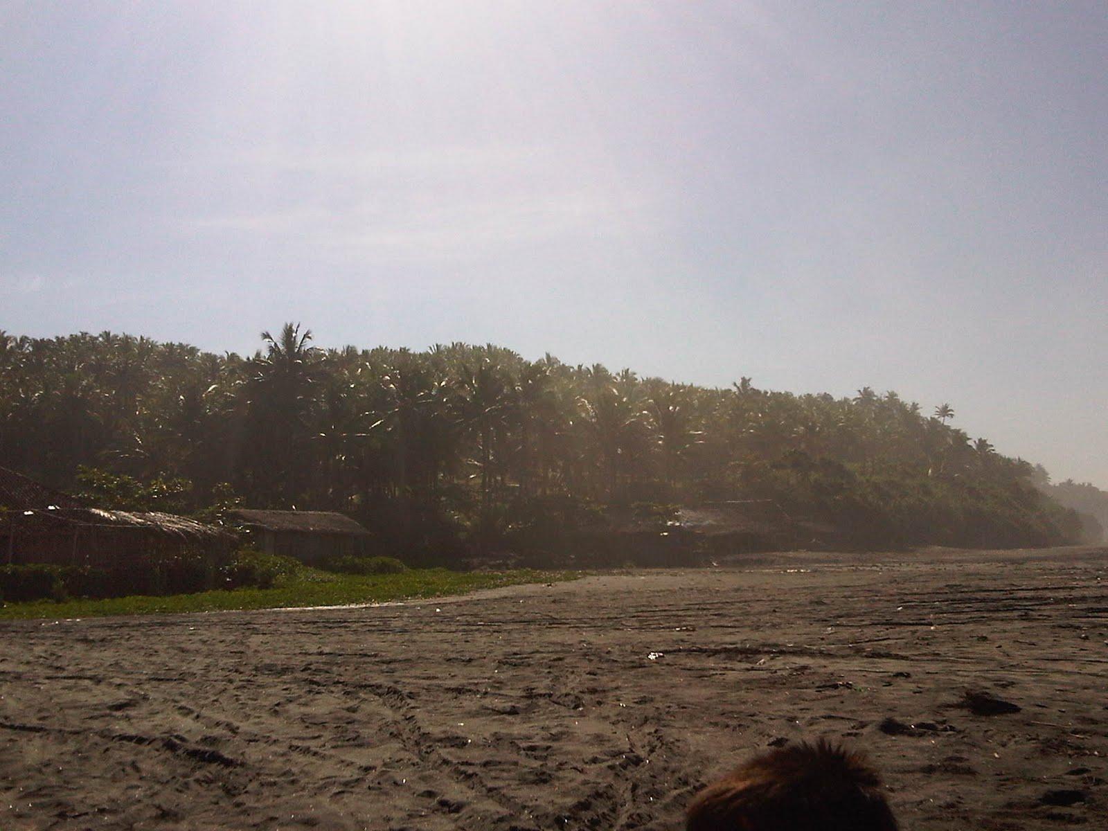 Cerita Pendek Pulang Kampung Cerita