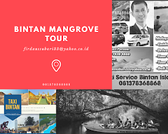Bintan mangrove tour sunflies Tour SNORKLING,spa Seafood Restaurant wa/081378368868/email firdaussu