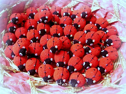 Coccinelle della fortuna