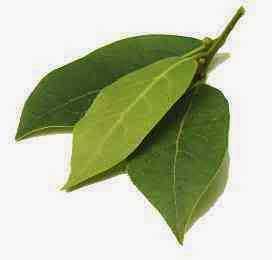 Indonesian original recipes 04 18 15 - Cook bay leaves ...
