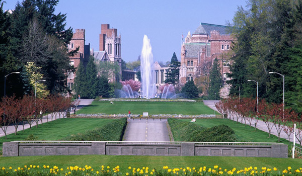 How to write an essay for university of washington
