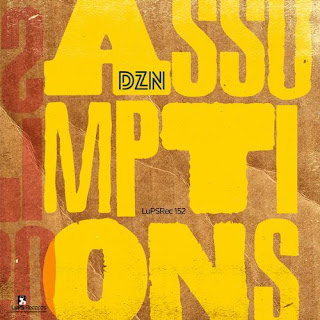 DZN – Assumptions