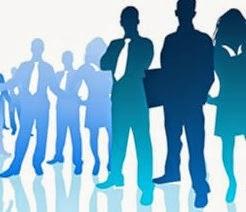 Res 52 Perfis dos Profissionais