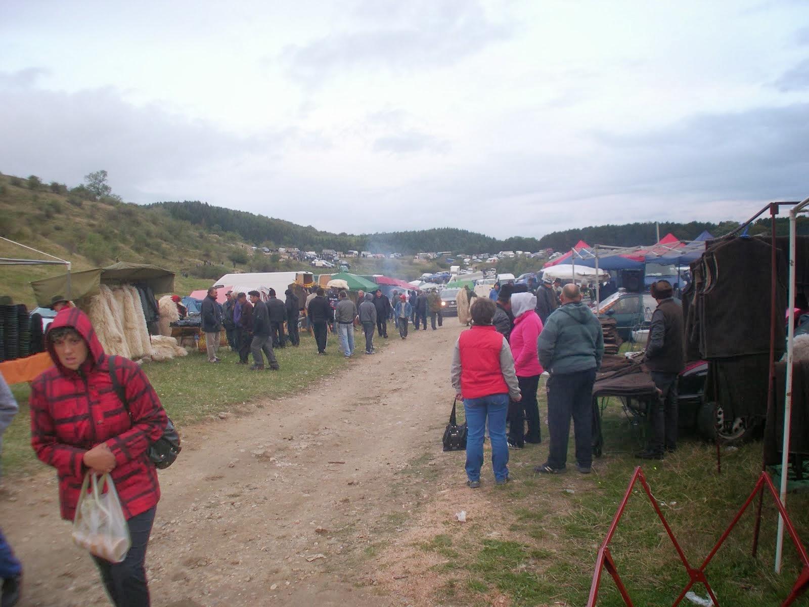 Animal fair 5